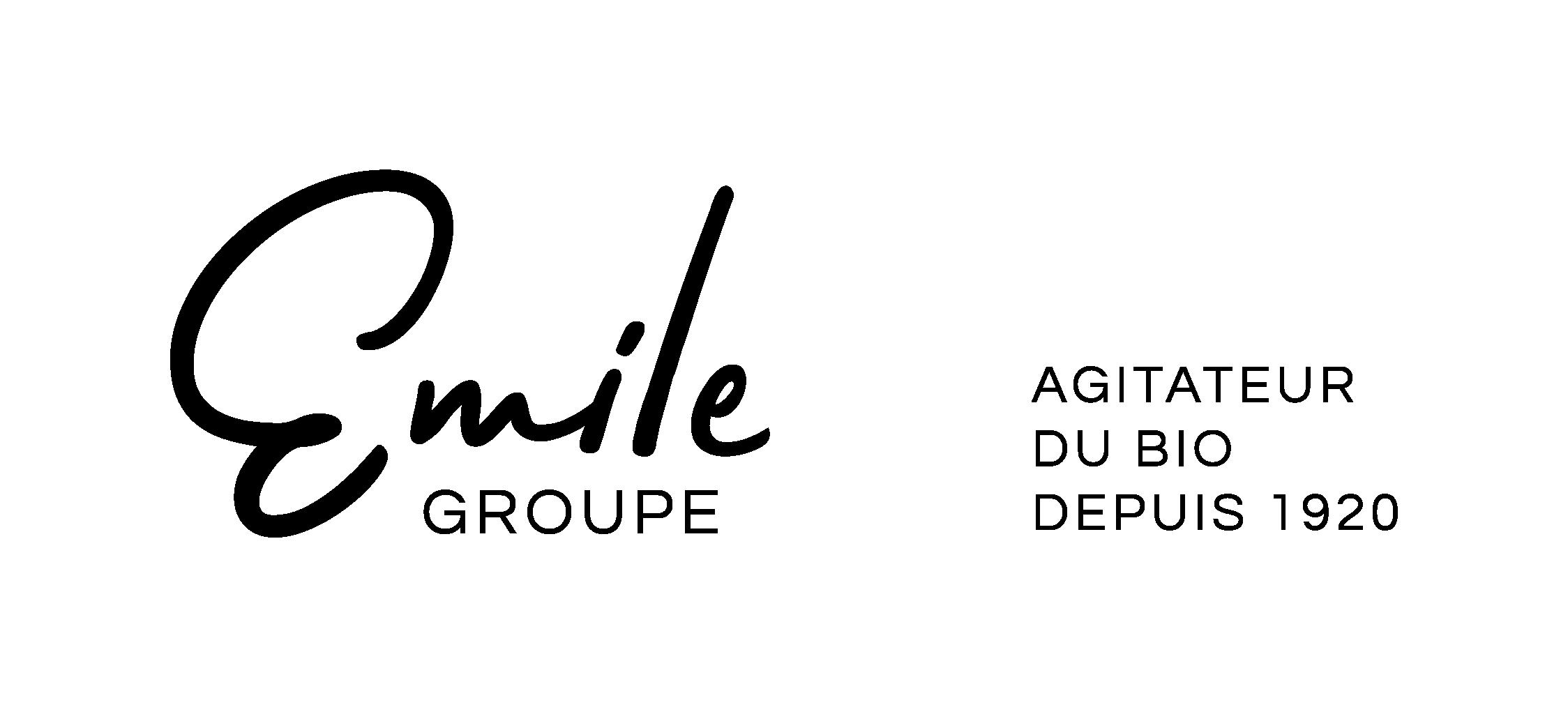 Logo Groupe Emile