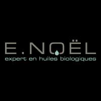 logo E-Noel